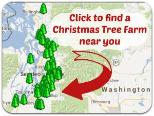 christmas-tree-farm-map