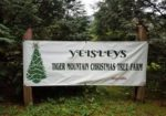 Yeisleys Tiger Mountain Tree Farm